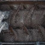 Mikrobelag